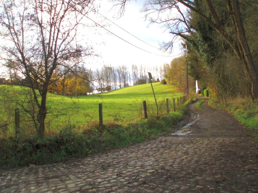 Le vallon verdoyant du Fond de Sclage