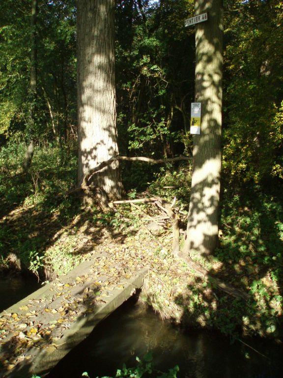 Ponceau de bois au dessus de la Cala sur le sentier n°46