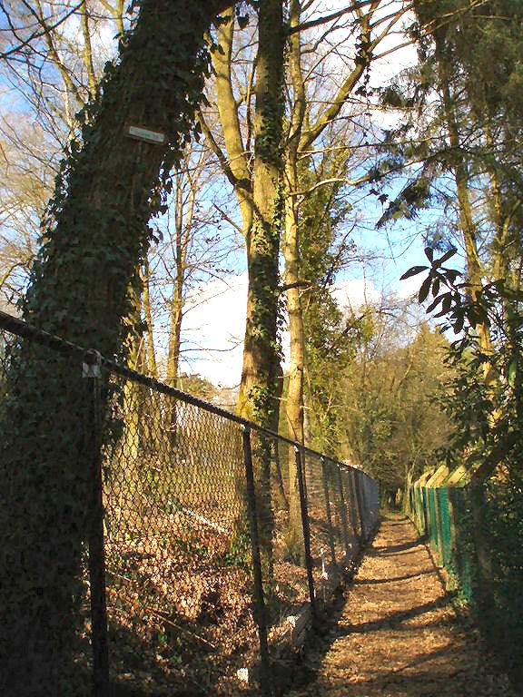 Sentier de la Fontaine Magotte à Bousval