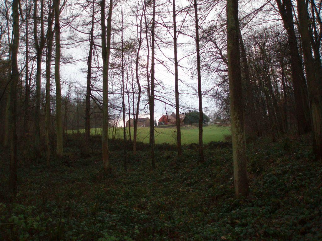 La ferme du bois d'Hez, vue du sentier n° 86 (Baisy-Thy).