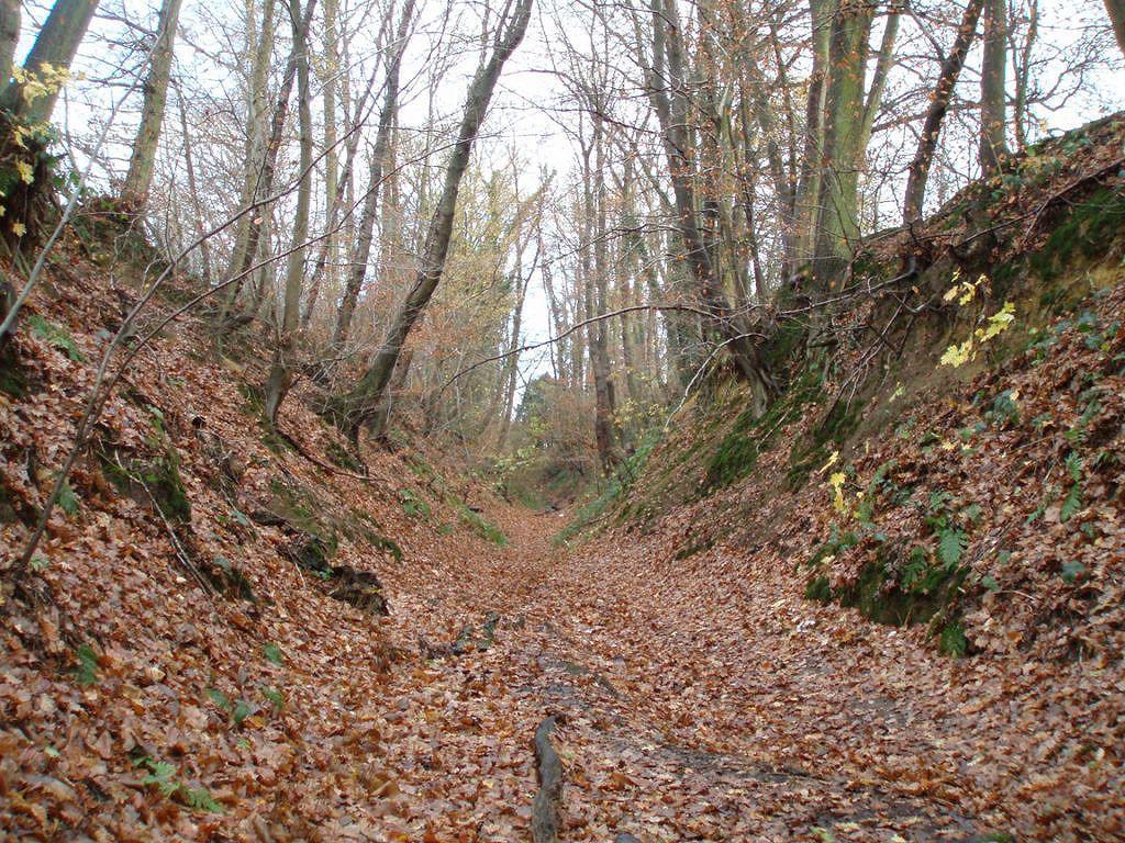 Chemin de Wavre à Bousval