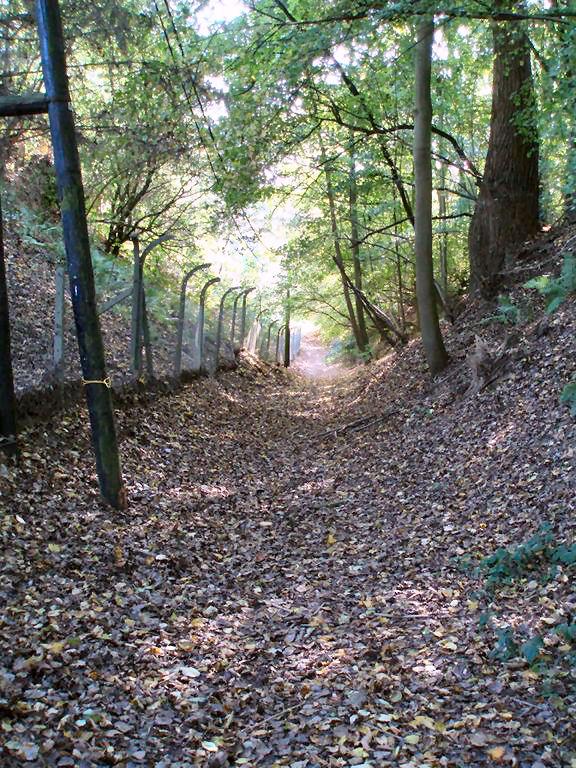Le chemin du Trainoy (n° 23)