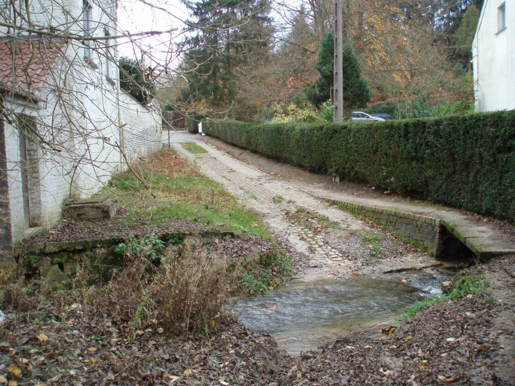 Le gué du ri d'Hez à la ruelle du Moulin (chemin n° 33 à Baisy-Thy).