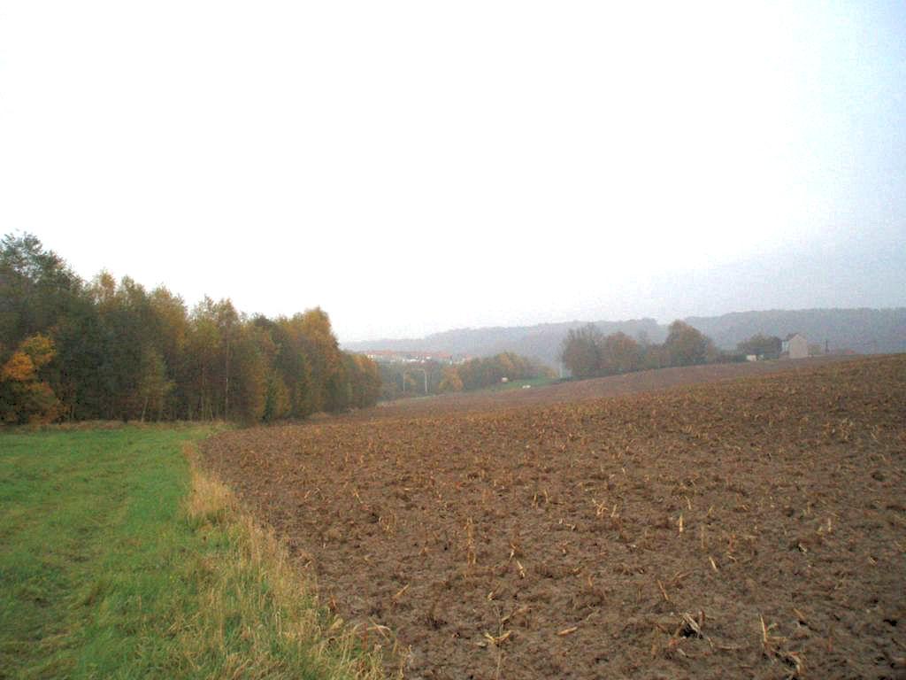 Panorama sur le champ du Bosquet et la ferme Laloux à Bousval